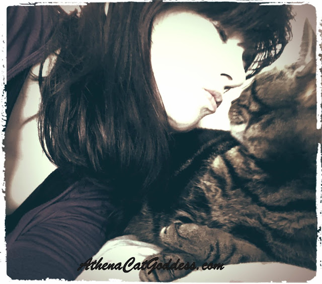 tabby cat and her human kissing