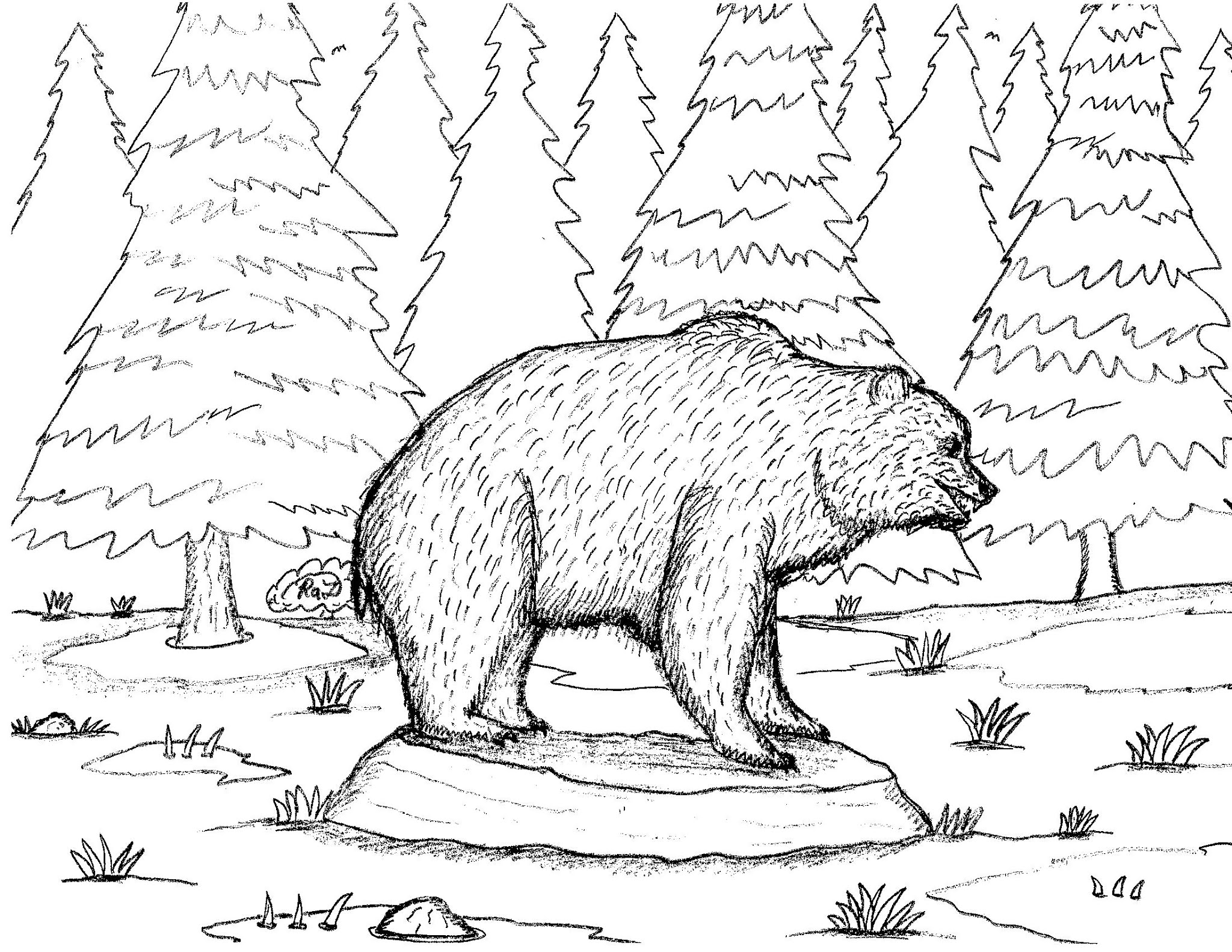 Robin S Great Coloring Pages Bear Coloring Pages