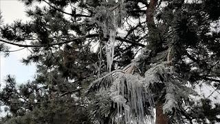 الارصاد الجوية التركية تحذر من الصقيع والثلوج