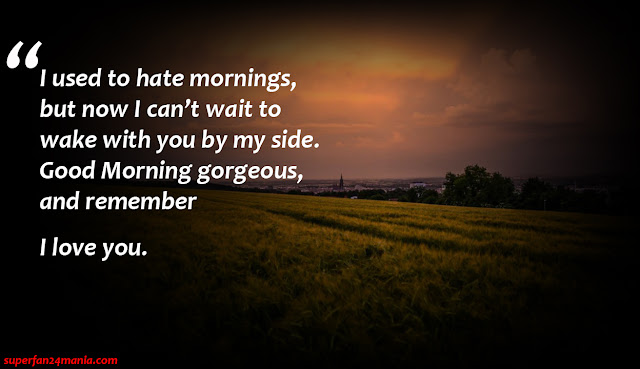 """""""I used to hate mornings, but now I can't wait to wake with you by my side. Good Morning gorgeous, and remember I love you."""""""