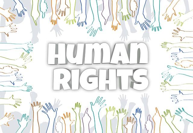 International human rights organizations