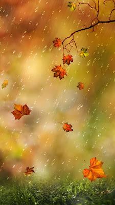 خلفيات عن المطر والسحاب,خلفيات عن المطر جديده,خلفيات عن المطر للواتس,خلفيات عن المطر والشتاء,اجمل الصور عن المطر والشتاء,اجمل الصور عن المطر, اجمل الصور عن هطول المطر