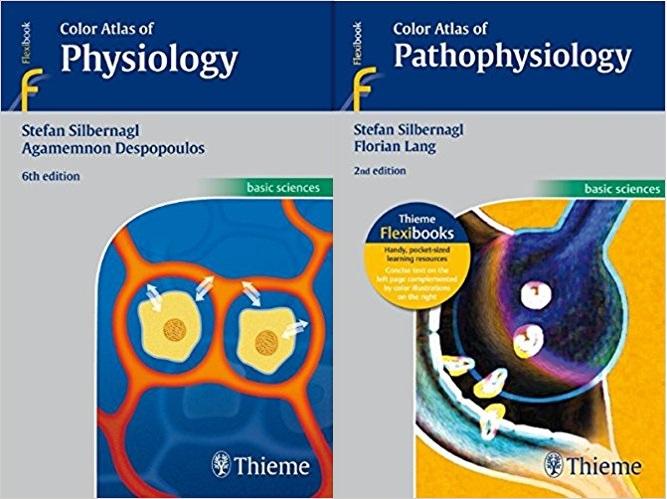 Netter Pediatrics Pdf Free Download --