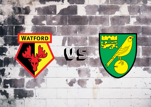 Watford vs Norwich City  Resumen