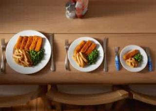 Porsi Makan Yang Tepat Bagi Tubuh