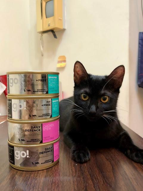 GO 貓咪主食罐開箱推薦
