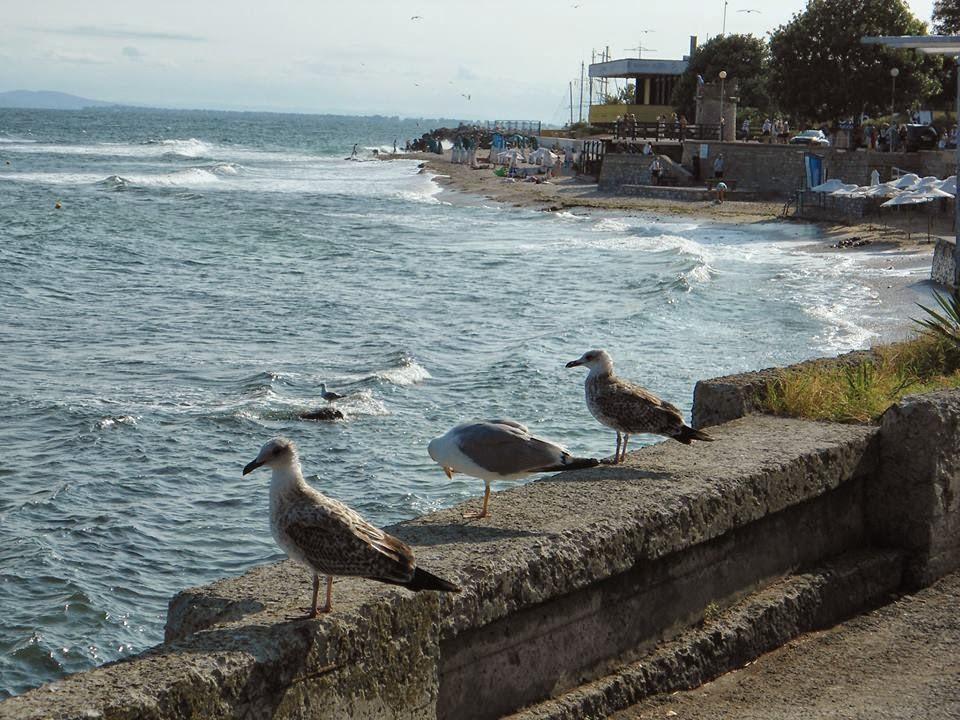 Bułgaria, Sunny Beach