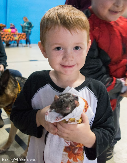 Franklin the Therapy Rat at Garden lakes trunk or treat