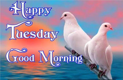 Good morning Tuesday blessings images download