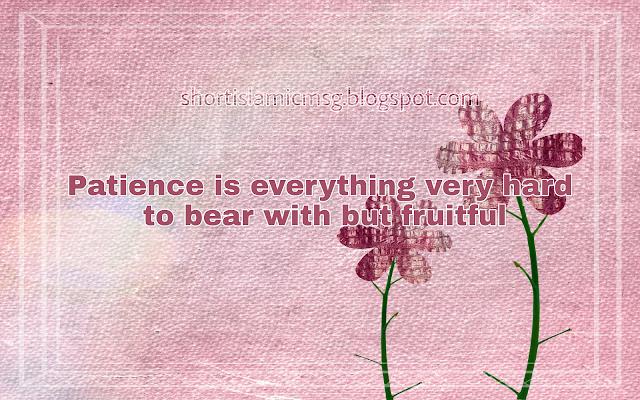 patience love flower
