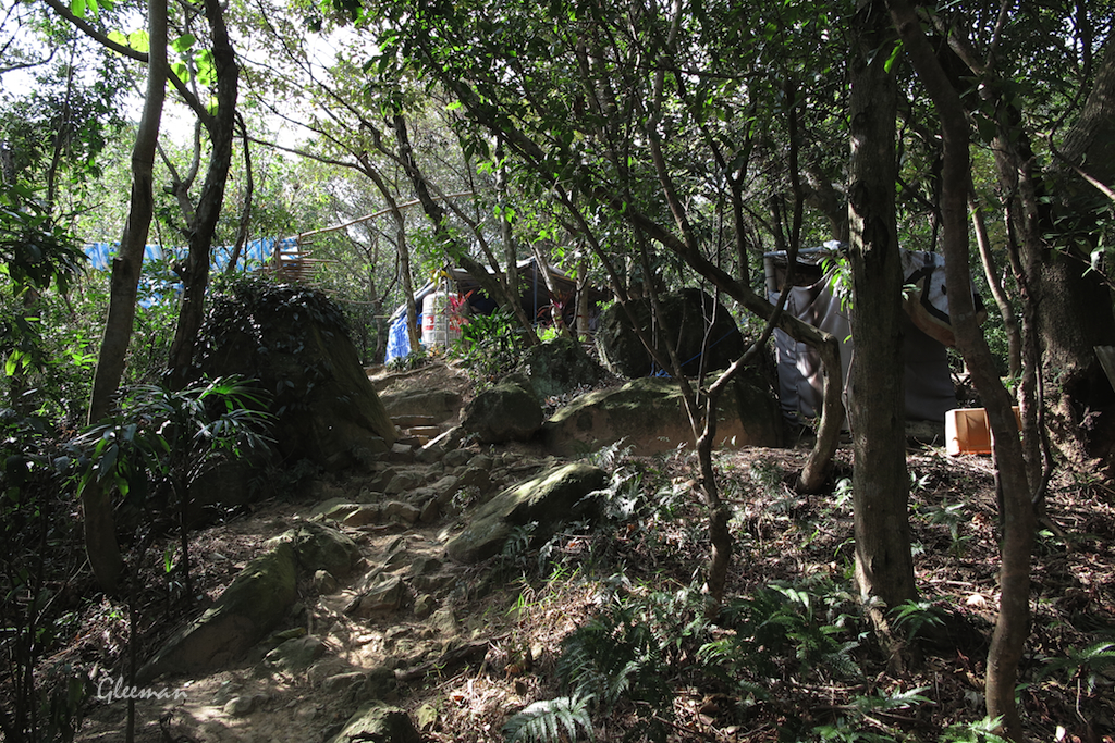 過了這戶人家?之後開始要登上雞南山山稜線