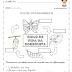 Metamorfose da borboleta para imprimir