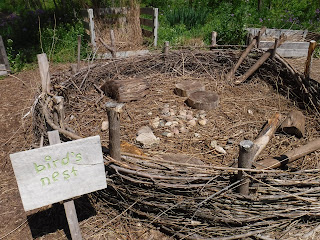 "a giant bird's nest with sign that says ""bird's nest"" in the Childrens' Garden at Lauritzen Gardens"