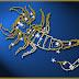 8 põhjust, miks Skorpionid on sodiaagi parimad armastajad.