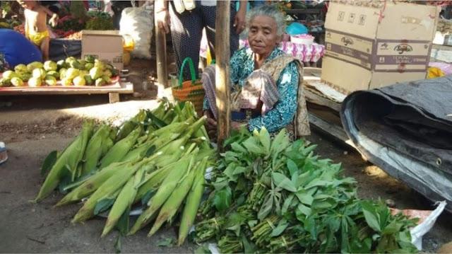 nenek berjualan di pasar ternyata anaknya bupati