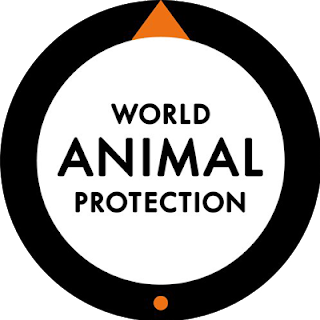 """India gets the second rank in Global Animal Protection Index 2020. This Index was released by International animal welfare charity """"World Animal Protection"""" released. The Animal Protection Index (API) aims to showcase where countries are doing well, and where they fall short on animal welfare policy and legislation."""
