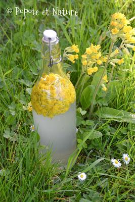 Limonade aux fleurs de coucou © Popote et Nature
