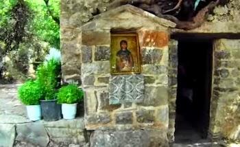 Το ανεξήγητο φαινόμενο με τα δένδρα στη σκεπή της Αγίας Θεοδώρας... [video]
