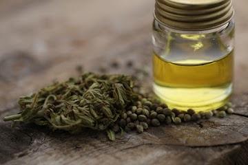 Médicos ficam chocados quando o óleo de cannabis cura mulher de câncer terminal