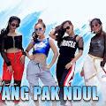 Lirik Lagu Rheyna Morena - Goyang Pak Ndul
