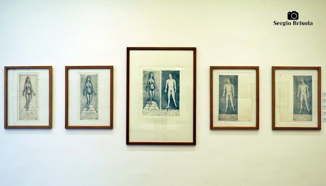Close-up de algumas gravuras da exposição Palimpsesto - Museu Lasar Segall - Vila Mariana - São Paulo