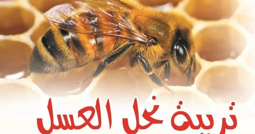 كتاب تربية النحل من البداية الى النهايه pdf