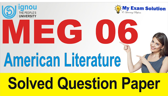 american literature, meg 06, american literature previous year question papers
