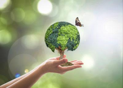 Jogo meio ambiente