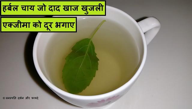 हर्बल चाय जो दाद खाज खुजली एक्जीमा को दूर भगाए