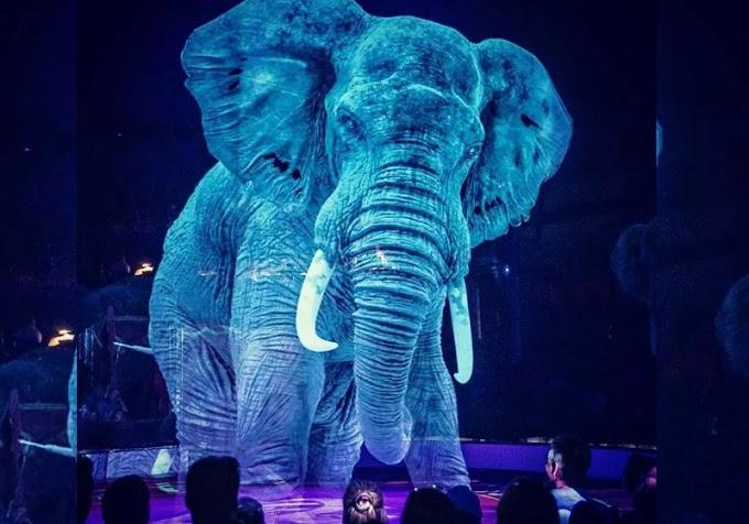 Circo alemão usa hologramas em vez de animais vivos para uma experiência mágica sem crueldade