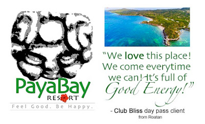 client feedback, quotes, good energy, positive, #payabay, #payabayresort, paya bay resort,
