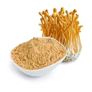 Applications of Cordyceps Mushrooms in Cosmetic Industry