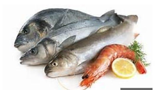 أسعار الأسماك اليوم بالأسواق المصرية