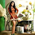 Trisha 2012 calender Hot pics