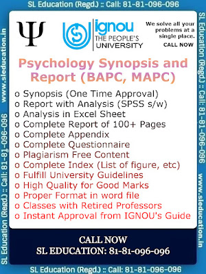 Psychology Synopsis and Report (BAPC,MAPC) Call: 81-81-096-096,
