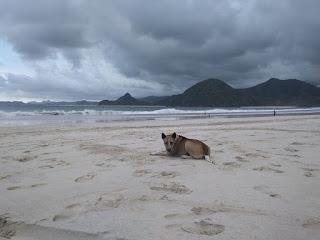 Mulai mendung di sekitar wilahnya pantai