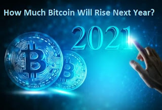 How Much Bitcoin Will Rise Next Year?