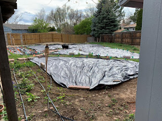 Rest of the urban farm with the start of the landscaping fabric on it (no rows burned in it yet and it's barely held down on the ground)