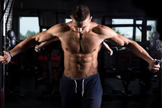 Understand the Characteristics of the Loss of Muscle Mass For Your Diet to Succeed