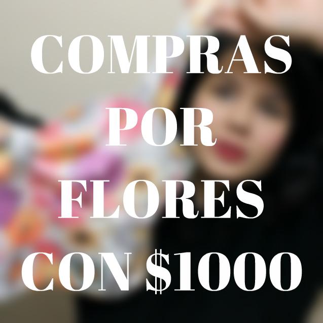 De compras por Flores con  1000  f7002e83b64b