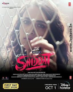 Shiddat: Journey Beyond Love Poster 10