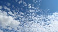 Перести облаци