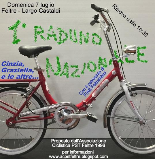 Ac Pst Feltre 1996