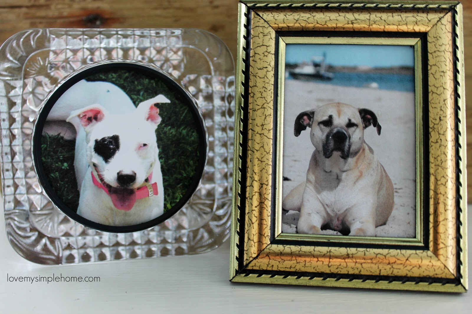 Glass block clock repurposed into a picture frame and dog stories having b in our lives has brought back the sweet sound in our home and opened my heart to love another dog again jeuxipadfo Images