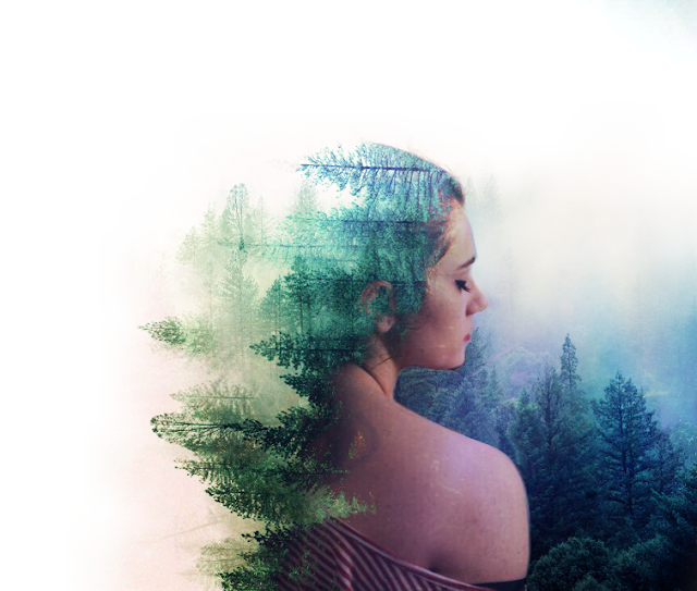 Double exposure picsart