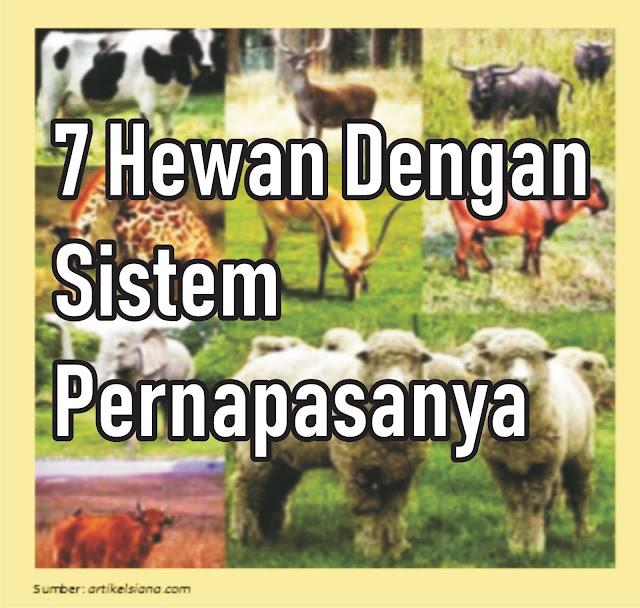 7 Hewan Dengan Sistem Pernapasanya - Materi Kelas V SD/MI Tema 2 Sub Tema 1