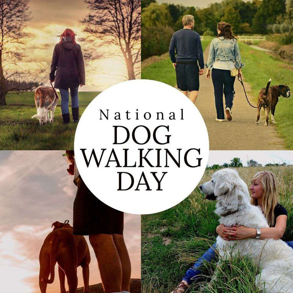 National Walking the Dog Day Wishes Images download