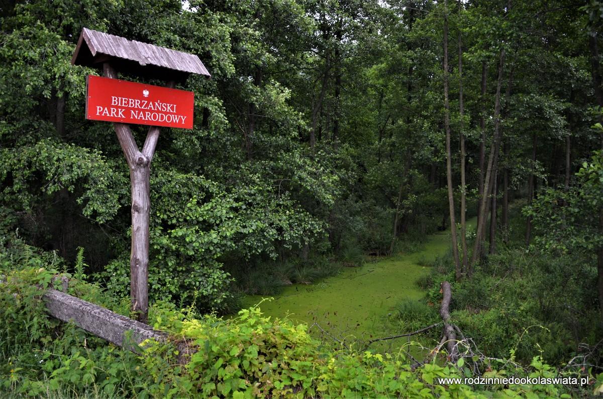 Carska Droga, Czerwone Bagno, czyli Biebrzański Park Narodowy rowerem i pieszo