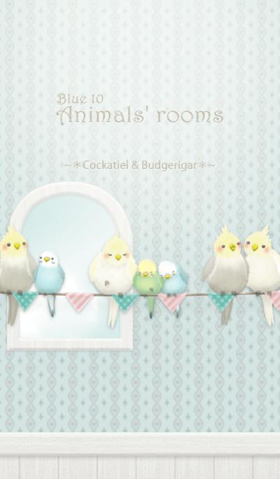 Animals' rooms[Cockatiel&budgie]/Blue10