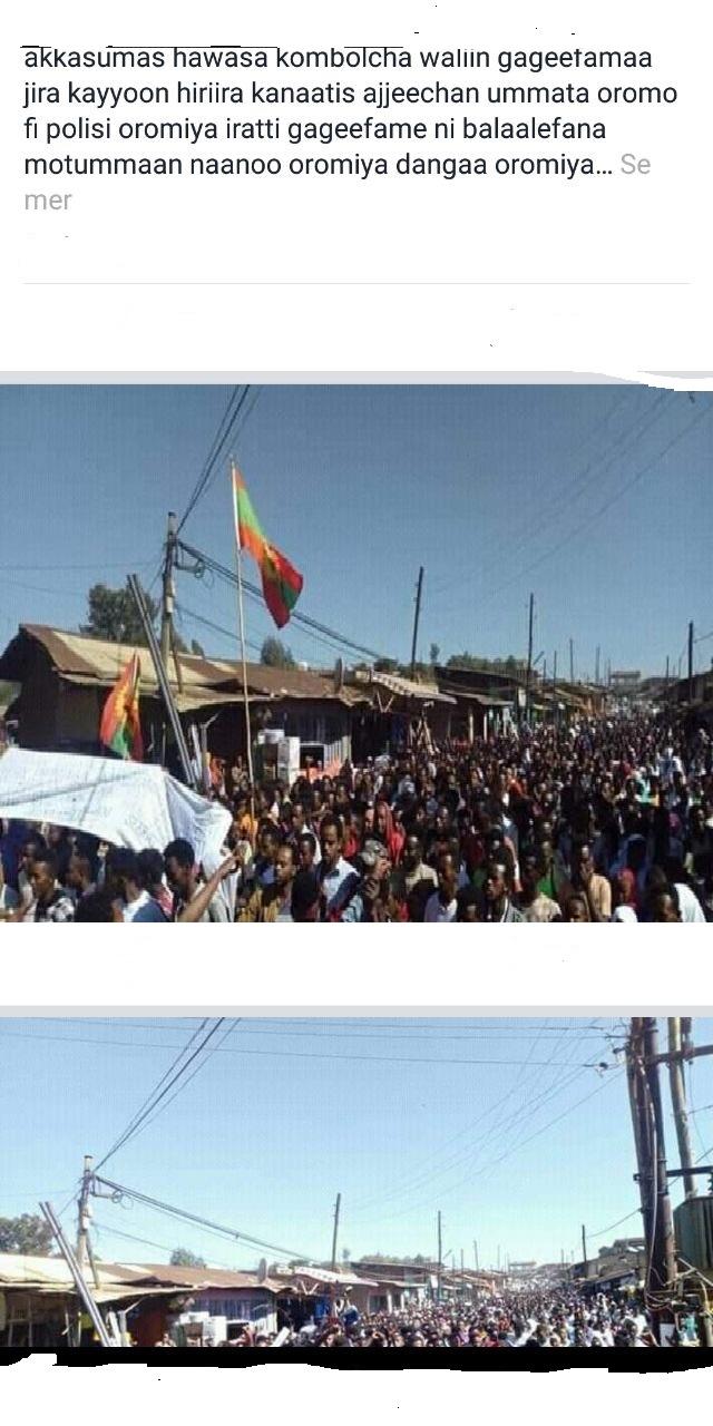 Siyaasan Oromiyaa